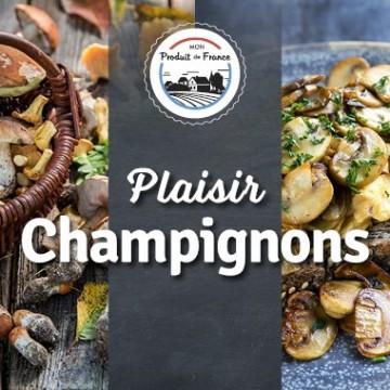 Plaisir Champignons