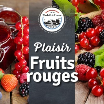 Plaisirs fruits rouges